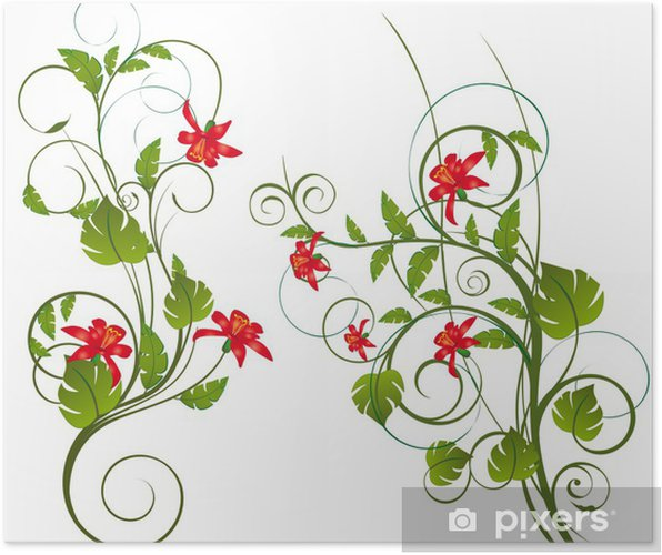 Poster Exotische bloemen - Achtergrond
