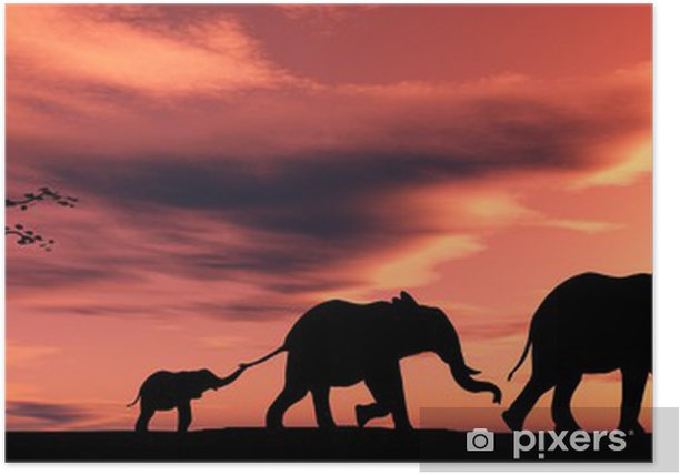 family of elephants Poster - Themes