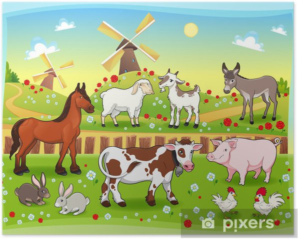 Farm animals with background. Vector illustration. Poster - Birds