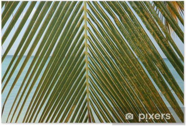 Poster Feuille de palmier - Vacances
