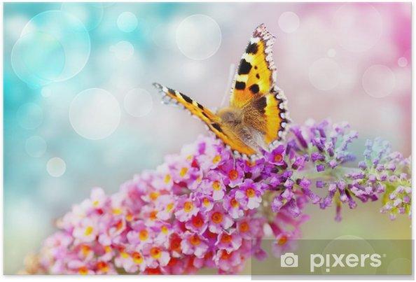 Poster Fjäril på blomman - Teman