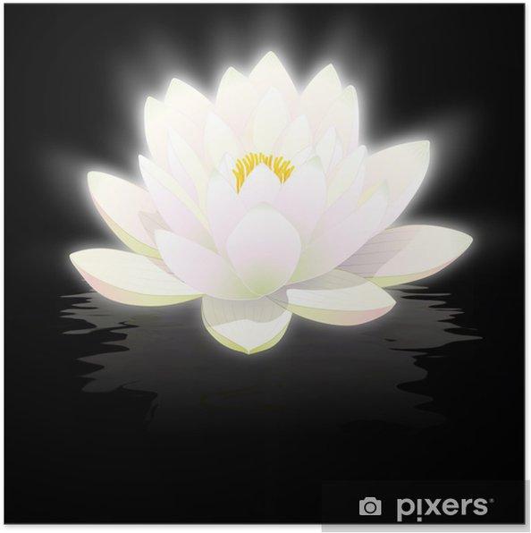 Poster Fleur De Lotus Blanc Sur Fond Noir Avec Reflets
