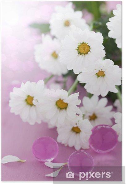 Poster Fleurs blanches marguerites - Beauté et soins du corps