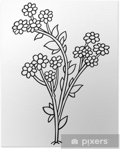 Poster Fleurs Dessin Animé Noir Et Blanc Illustration