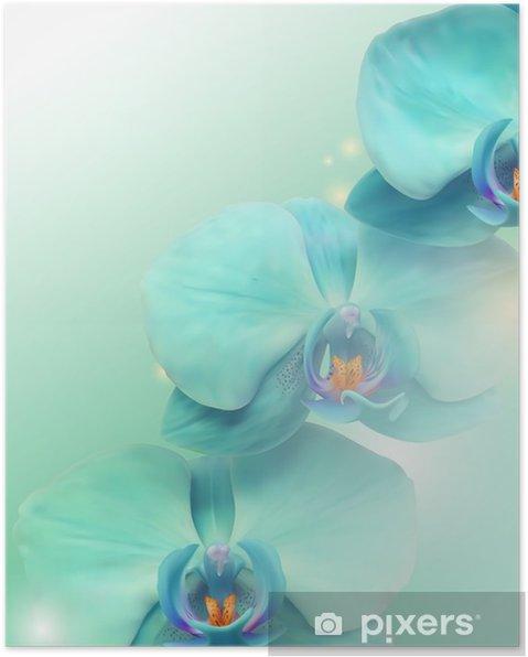 Póster Flor de la orquídea de fondo - Temas