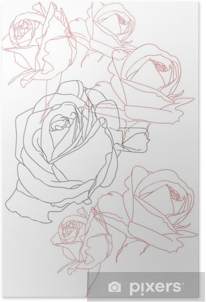 Flowers, line roses, Isolated on white background. Poster - Plants and Flowers