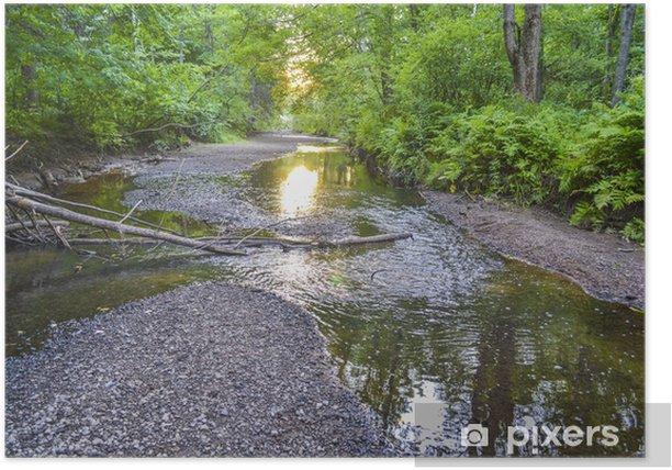 Poster Flux d'eau traversant la forêt - Nature et régions sauvages