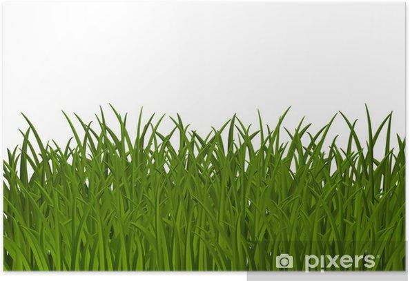 Poster Fond d'herbe avec de la place pour le texte - Saisons