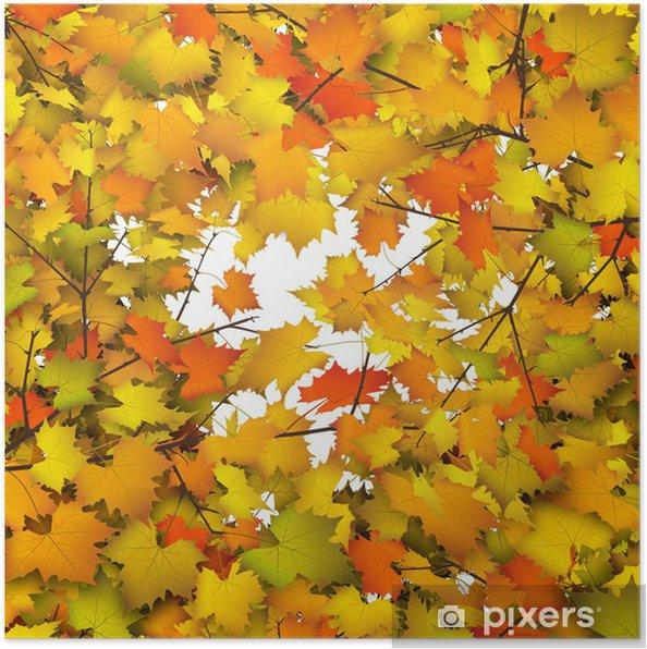 Poster Fond, feuilles d'automne, feuilles d'automne, branche, brindille, feuille - Saisons