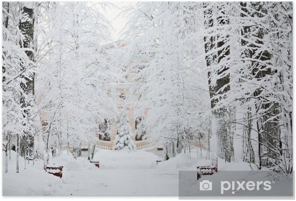 Poster Forêt d'hiver froid paysage neige - iStaging