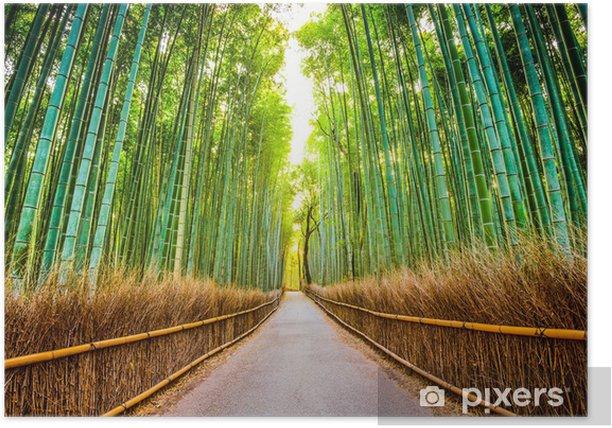 Poster Forêt de bambous au Japon - Japon