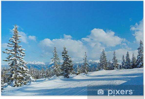 Poster Forêt de sapins de montagne d'hiver paysage - Thèmes
