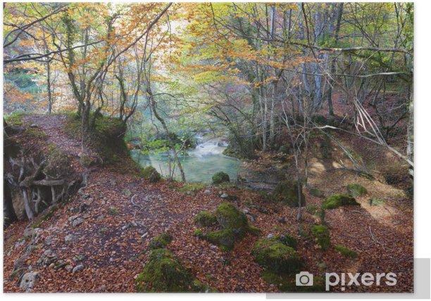 Poster Forêt et lake.Navarra vert, Espagne. - Sports d'extérieur