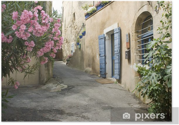 Poster Français Village Street view Fleur Provence France - Styles