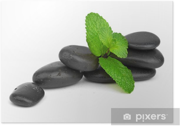 Fresh mint on the black stones with drops Poster - Peace