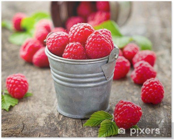 Fresh raspberry Poster - Raspberries