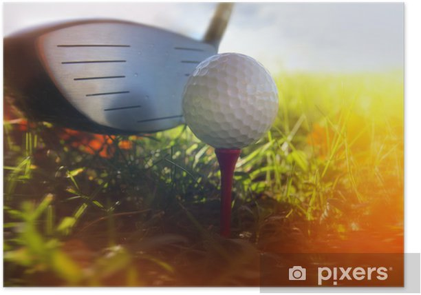 Golf club and ball in grass Poster - Golf