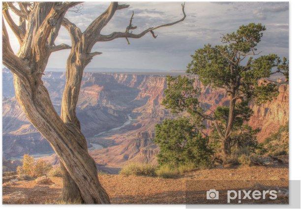 Poster Grand canyon désert vue - PI-31