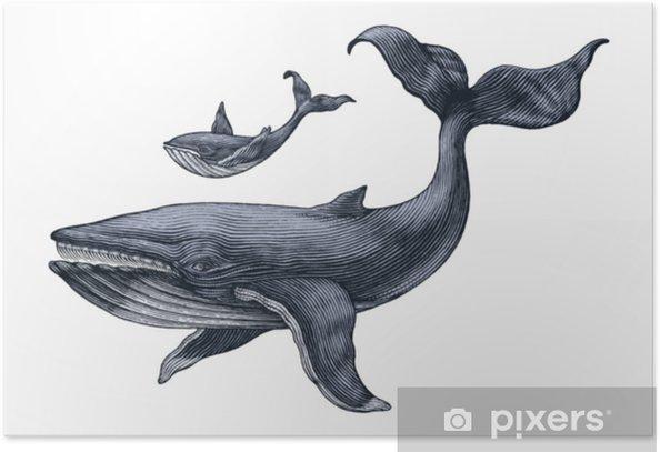 Poster Grande Baleine Et Petite Main De Baleine Dessin Illustration De Gravure Vintage Pixers Nous Vivons Pour Changer