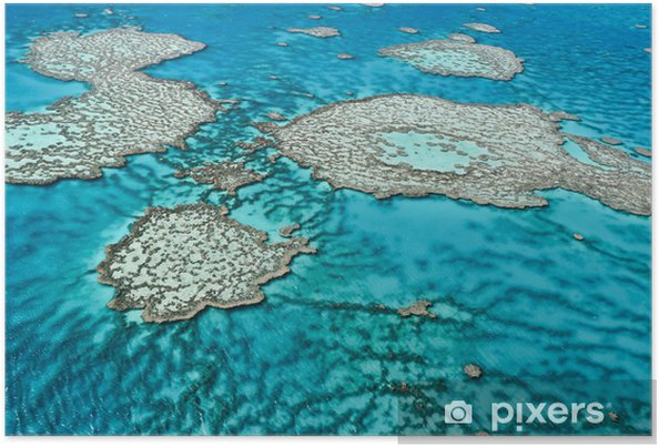 Poster Great Barrier Reef in Queensland, Australië. - Koraalrif