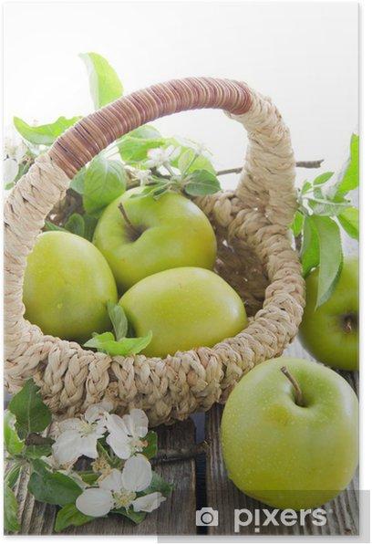 Green apples. Poster - Fruit
