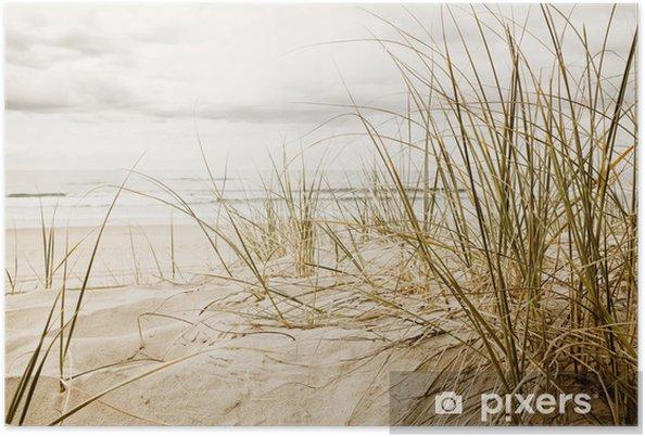 Poster Gros plan d'herbe haute sur une plage - Destin
