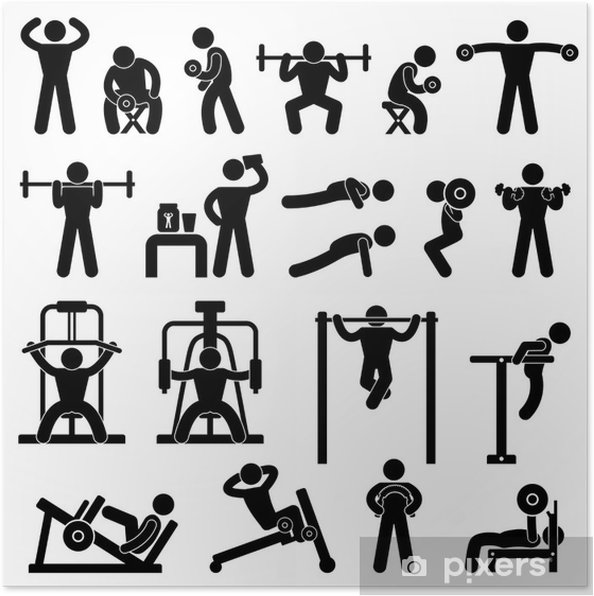 Gym Gymnasium Body Building Exercise Training Fitness Workout Poster