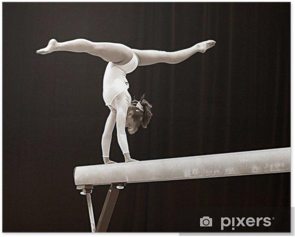 gymnast - 2 Poster - Individual Sports