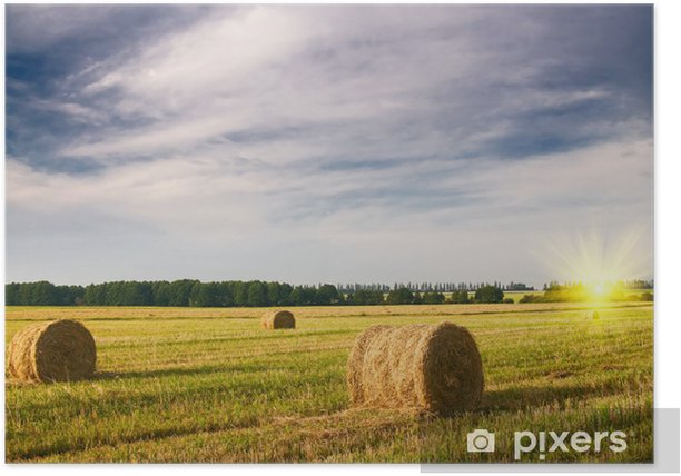 Haystack And Stubble By Summertime Poster