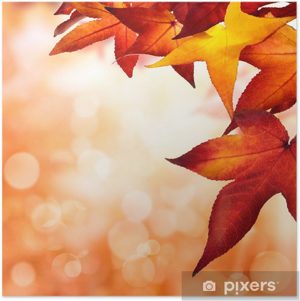 Herbst Hintergrund Quadratisch Poster Pixers We Live To Change