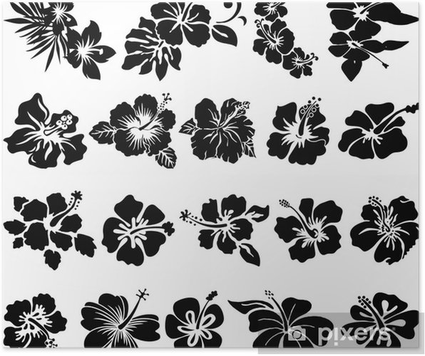 Hibiscus flower silhouettes Poster