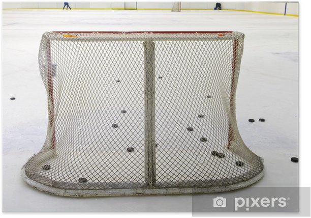 ice hockey net Poster