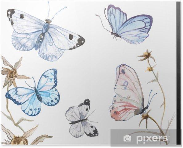 Poster Illustration de papillons aquarelle - Animaux