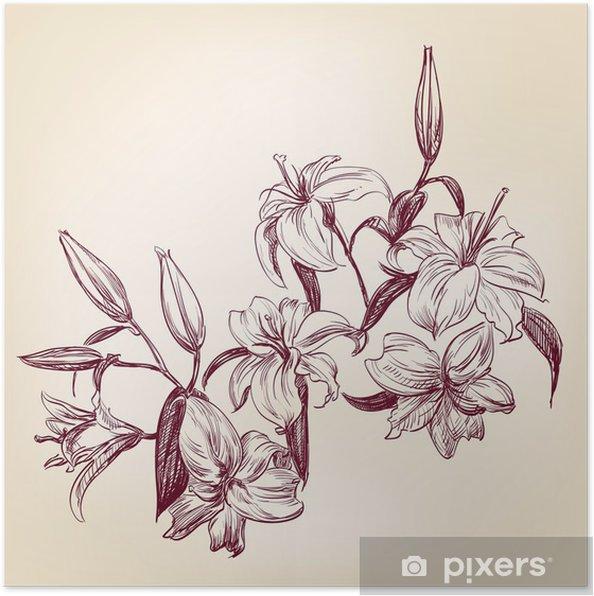 Poster Illustration lys - Fleurs