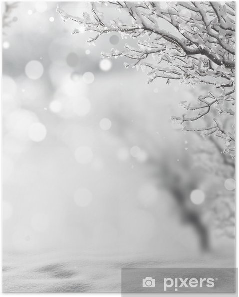 Póster Invierno de fondo - Temas