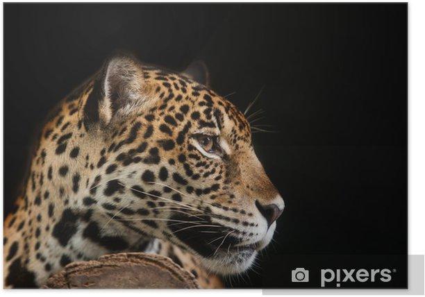 Jaguar portrait Poster - Success and Achievement
