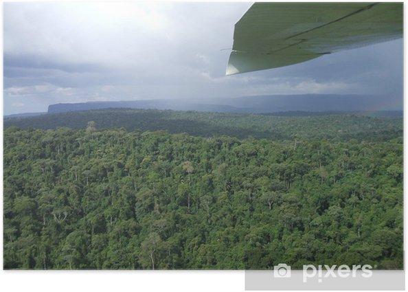 Poster Jungle amazonienne - Thèmes