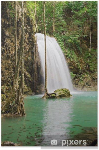 Poster Jungle cascade - Paix