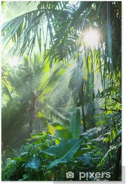 Jungle Poster - Themes