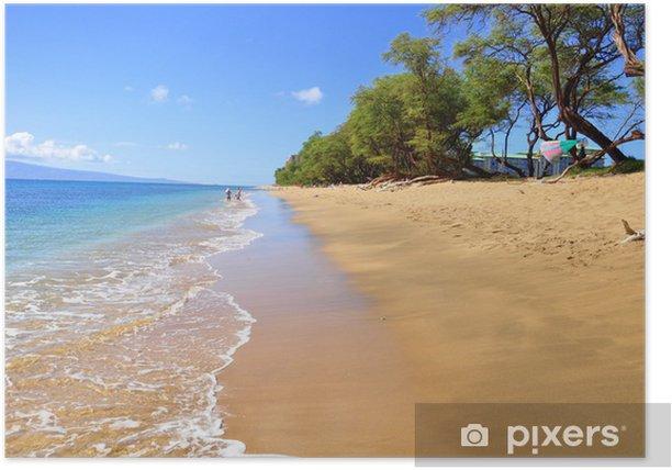 Kaanapali Beach Maui Hawaii Poster