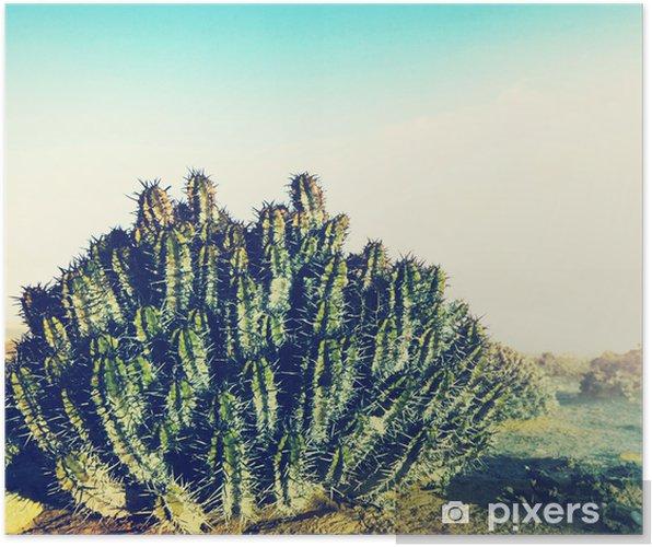 Poster Kaktus i öknen - Afrika