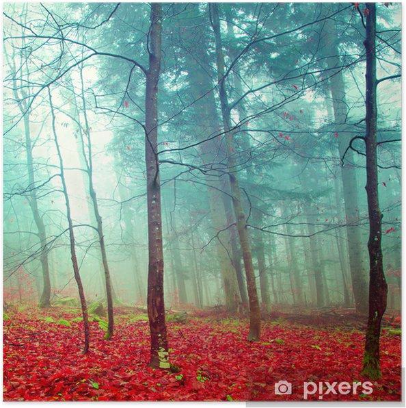Poster Kleurrijke mystieke herfst bomen - Bestemmingen