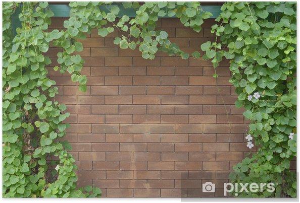Bakstenen Muur Tuin : Poster klimop struik op bakstenen muur achtergrond u2022 pixers® we