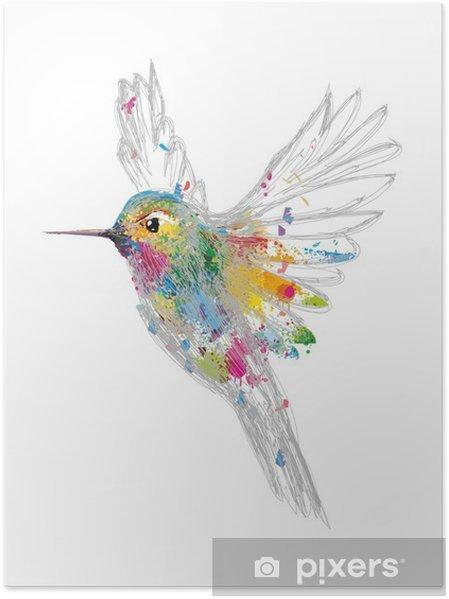 Poster Kolibri - science &; nature