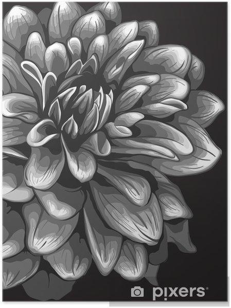 Póster La ilustración de la dalia - Flores