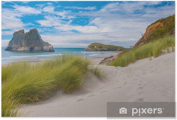 Poster La végétation des dunes à Célèbre Wharariki Beach, Île du Sud, Nouvelle Zélande - Océanie