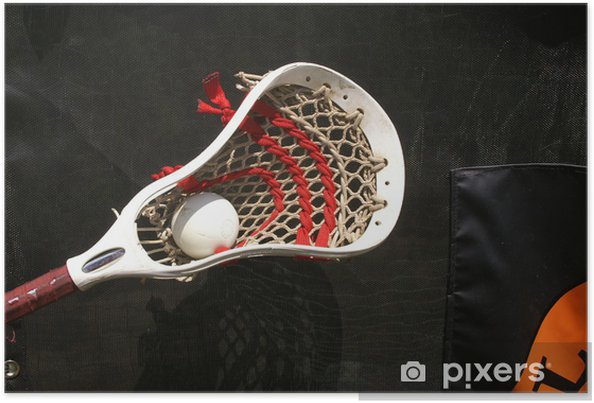Poster Lacrosse Head avec Ball 3 - Articles de sport