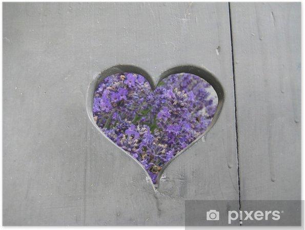 Póster Lavendel - Flores