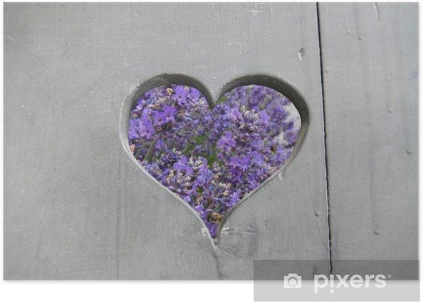 lavendel Poster - Flowers