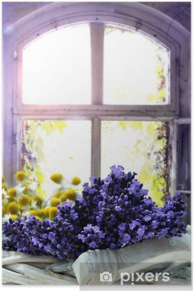 Póster Lavendel - Hierbas